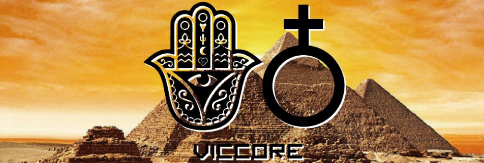 viccore official shop